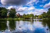 Pond in the Public Garden in Boston, Massachusetts. — Stock Photo