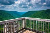 View of the Blackwater Canyon from Lindy Point, Blackwater Falls — Stock Photo