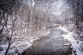 Winter view of Gunpowder Falls in rural Baltimore County, Maryla — Stock Photo