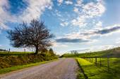 Farm fields along a dirt road in rural York County, Pennsylvania — Stock Photo