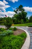 Gardens and walkways at Druid Hill Park, Baltimore, Maryland.  — Stock Photo