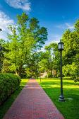 Streetlight and bushes along a brick walkway at John Hopkins Uni — Stock Photo