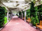 Garden trellis over a path and buildings at Norman B. Leventhal  — Stock Photo