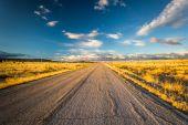 Evening light on a country road near Albuquerque, New Mexico. — Stock Photo