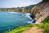 Cliffs along the Pacific Ocean, in La Jolla, California. — Stock Photo