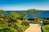 Gardens and trees overlooking the Pacific Ocean at Heisler Park, — Stock Photo