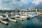 A marina in Long Beach, California. — Stock Photo