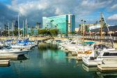 Marina and buildings in Long Beach, California. — Stock Photo