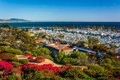 Flowers and view of the harbor from Heritage Park in Dana Point, — Foto de Stock
