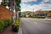 Colorful trees and flowers along Glenneyre Street, in Laguna Bea — Stock Photo