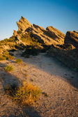 植物や岩石 Vasquez 岩郡公園、アグア ・ ドゥルセ、カリフォルニア州で — ストック写真