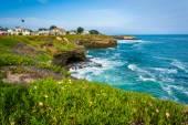 Utsikt över klipporna längs Stilla havet, i Santa Cruz, Californi — Stockfoto