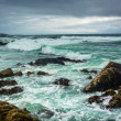 Waves and rocks in the Pacific Ocean, seen from the 17 Mile Driv — Stock Photo #71044095
