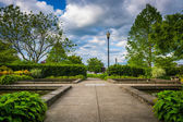 Gardens at the South Waterfront Park in Portland, Oregon. — Stock Photo