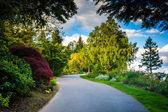 Trees along a walkway at Pittock Acres Park, in Portland, Oregon — Stock Photo