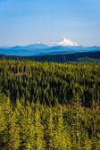 Vista di Monte Jefferson, dalla montagna di Tom, Dick e Harry, in — Foto Stock