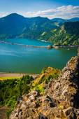 View of the Columbia River from Mitchell Point, Columbia River G — Foto de Stock