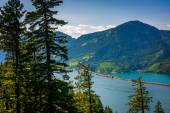 View of the Columbia River from Mitchell Point, Columbia River G — Stockfoto