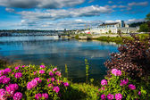 Flowers and Lake Union, in Seattle, Washington. — Stockfoto