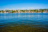 Lake Union at Gas Works Park, in Seattle, Washington. — Stockfoto