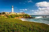 Flowers and view of Piegon Point Lighthouse in Pescadero, Califo — Стоковое фото