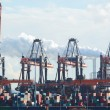 Container Cranes and Containers at a Dock — Stock Photo #66911417