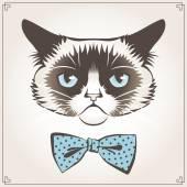 Grumpy cat — Stock Vector