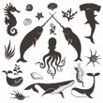 Sea life, marine animals. — Stock Vector #55088265