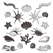 Vintage sea shells, starfish, seaweed, coral and waves. — Stock Vector
