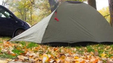Camping Tent In Autumn Forest. — Stock Video