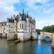 Chateau of Chenonceau with river Cher — Stock Photo #55042315