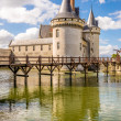 Chateau of Sully sur Loire with moat — Stock Photo #55229481