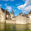 Moat with chateau of Sully sur Loire — Stock Photo #55229495