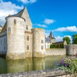 Chateau of Sully sur Loire — Stock Photo #55229519