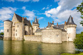 Moat with chateau of Sully sur Loire — Foto Stock
