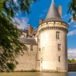 View at the chateau Sully sur Loire — Stock Photo #55232375