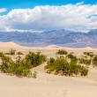 Mesquite Flat - Sand dunes — Stock Photo #75626113