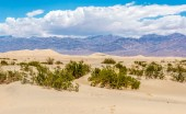 Mesquite Flat - Sand dunes — Stock Photo