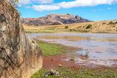 Anja - Nature reserve of Madagascar — Stock Photo