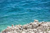 Adriatic Sea. — Stockfoto
