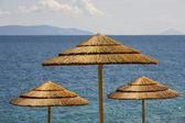 Umbrella near the beach. — Stock Photo