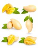 Yellow mango collection isolated on white background. — Stock Photo