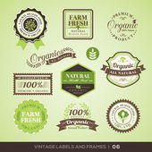 Vintage Fresh Organic Product Labels and Frames — Stock Vector