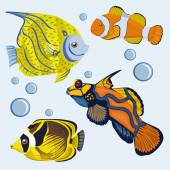 Tropical fish. Brilliantly Colored Coral Reef Fishes. — Stock Vector