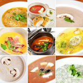 First courses collage — Foto de Stock