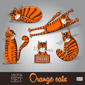 Illustration of the lovable orange cats set on a grey background — Stock Vector