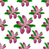 Floral orchid  flower pattern vector. — Stock Vector
