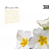 Floral invitation card with beautiful spring flower and banner style. Perfect for wedding, greeting design. — Stockvector