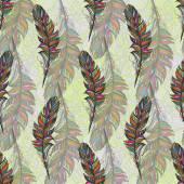 Multicolor fjäder, isolera. Med vit bakgrund. Vektor — Stockvektor