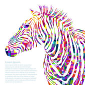 Animal watercolor illustration silhouette zebra. Vector — Stok Vektör